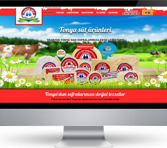 Trabzon Web Tasarım Çalışmalarımız